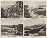 San Diego, California: Sea Gulls and Young Birds, Coronado Islands; The Breakers at High Tide