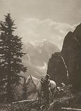 Canada: Saddleback Trail, Paradise Valley, Rocky Mountains, Alberta