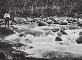 Australia: Trout Rapids, Snowy River, Jindabyne, New South Wales