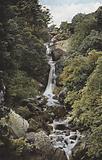Ireland: The Waterfall in the Devil's Glen, County Wicklow