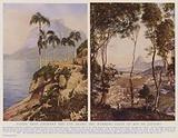 Vistas that enchant the eye along the winding coast of Rio de Janeiro