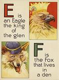 E is an Eagle the king of the glen; F is the Fox that lives in a den