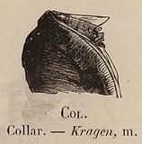 Le Vocabulaire Illustre: Col; Collar; Kragen
