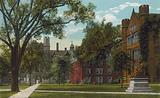 New Haven, Conn: View in the Campus, Yale University