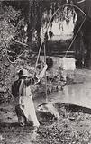 Fishing at Hamurana