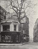 The Wood Street plane tree, Cheapside, London