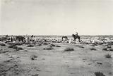 Desert near Biskra, Algeria