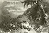 Infanticide in Madagascar