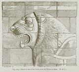 Head of One of the Lions from the Frieze at Susa