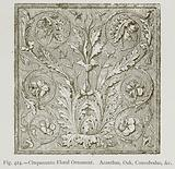 Cinquecento Floral Ornament. Acanthus, Oak, Convolvulus, &c.