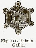 Fibula. Gallic