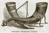 Ancient Drinking Horns