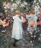 Carnation Lily, Lily Rose