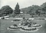 The Royal Botanic Gardens, view in the Royal Botanic Gardens