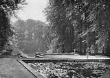 South Pond Terrace