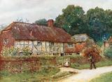 In Witley Village