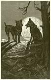 The Wolf and the Mastiff