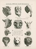 Page from Hennecke's Art Studies