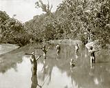 Australian Aborigines Spearing Fish