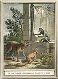 The wolf pleading against the fox in front of the monkey