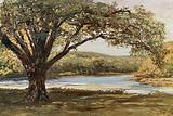 The Vale of Avoca