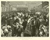 An Irish Pig Fair on a Wet Day