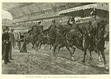 The Military Tournament at the Royal Agricultural Hall, Royal Horse Artillery galloping
