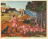 Feeding Pigs 15th Century