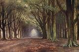 The Beech Avenue, Thoresby