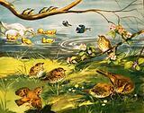 The birds go to school