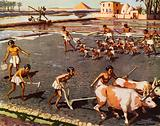Ploughing and sowing in Egypt during the pyramid period
