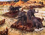 Hannibal's elephants crossing the Rhone