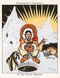 In the Arctic Regions