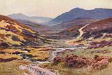 A Moorland Track, The Devil's Bridge