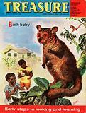 Bush-baby