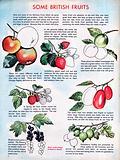 British fruit