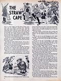 The Straw Cape