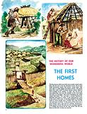 The History of Our Wonderful World: The First Homes