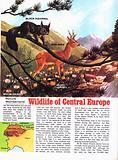 C. European wiildlife