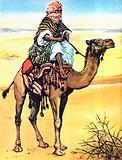 Bedouin astride a camel