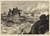 The Arctic expedition, shooting Walrus with the Harpoon gun
