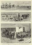 Sketches of Life on an Estancia in the Argentine Republic