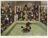 In the early days of our Century, Popular Sport in 1800