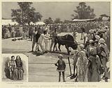 The Dassera, or Annual Sacrificial Festival of the Goorkha Regiments in India