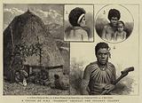 "A Cruise of H M S ""Diamond"" amongst the Solomon Islands"
