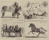 The Horse Show at the Alexandra Park