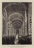 The Last Public Audience of Pius IX