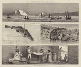 The Newfoundland Cod-Fishery