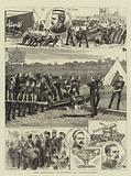 The Artillery Volunteers at Shoeburyness