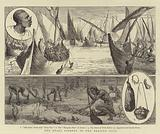 The Pearl Fishery in the Persian Gulf